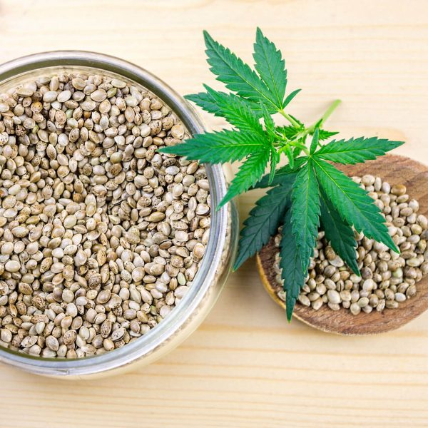 cannabis-seeds-in-glass-bowl-and-hemp-leafs-rich-in-protein-and-healthy-fats_t20_7WBYXk (1)